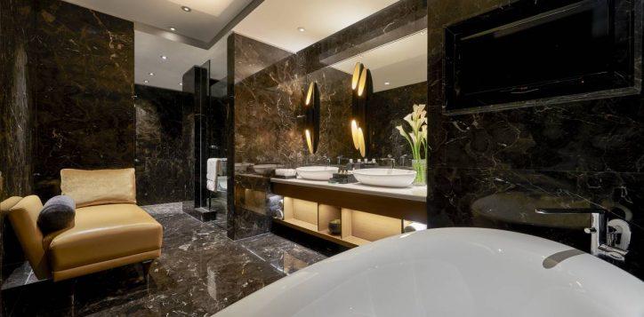 accent-suite-bathroom-2